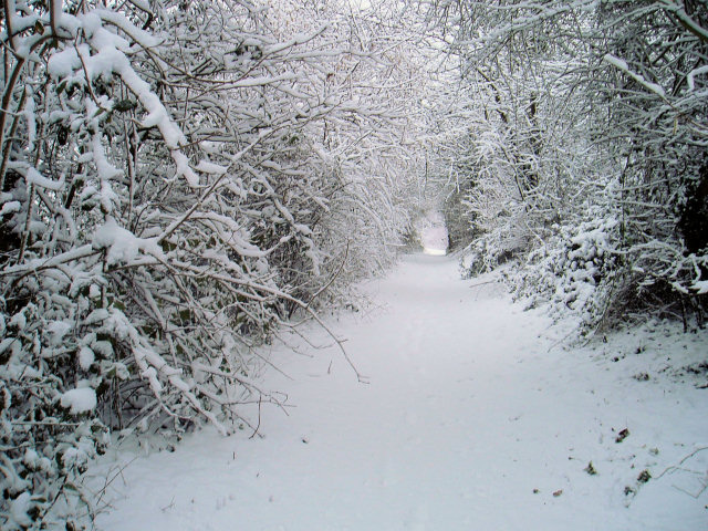 Path to Snowhere